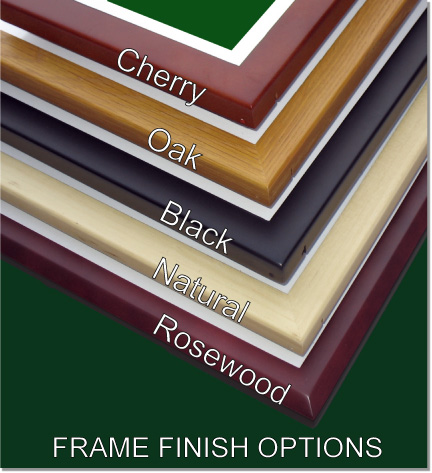 Frame Finish Options